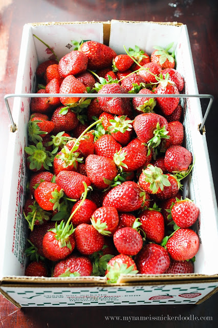 How to perfectly freeze your strawberries to use later in smoothies!  |  mynameissnickerdoodle.com