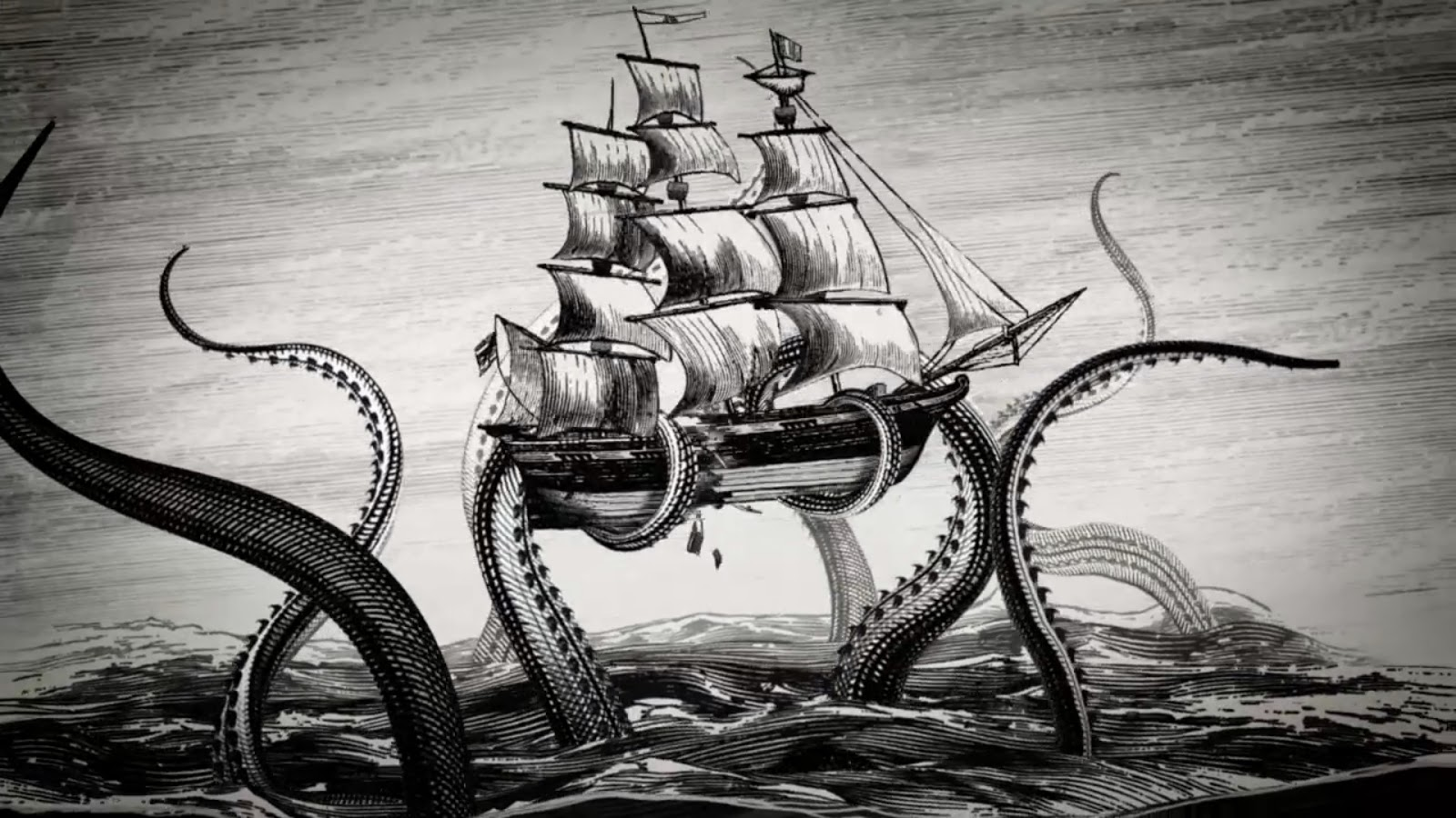 UFO SIGHTINGS DAILY 60 Meter Giant Squid Found On Google Earth The