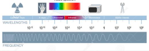 Datering ultraljud vid 9 veckor nivå 2