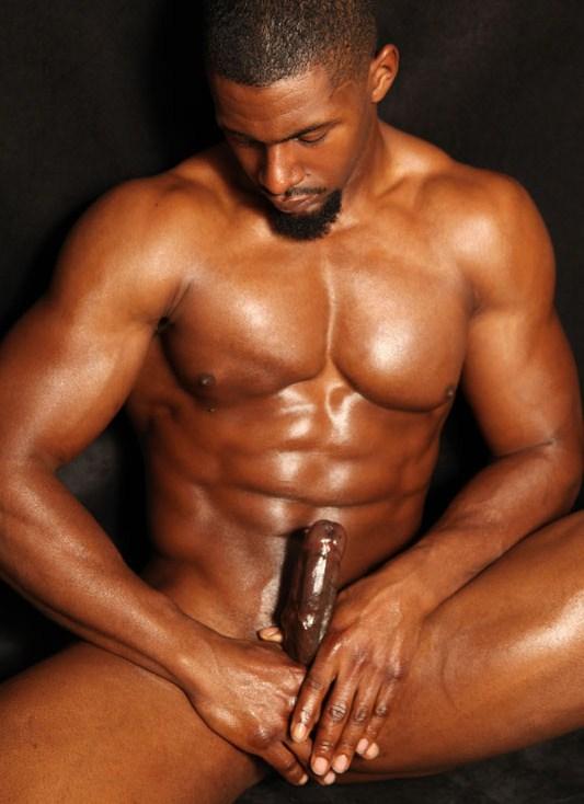 Zwarte homo porb