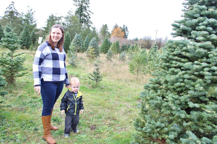 Looking for a Christmas tree is so much more fun with a toddler in tow.