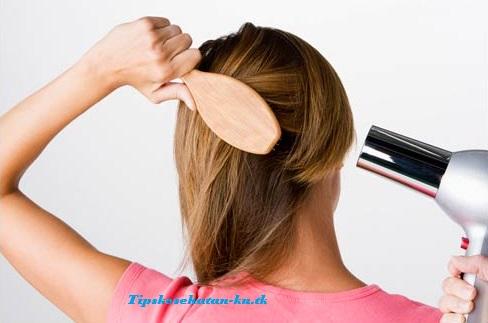 Cara Menggunakan Pengering Rambut