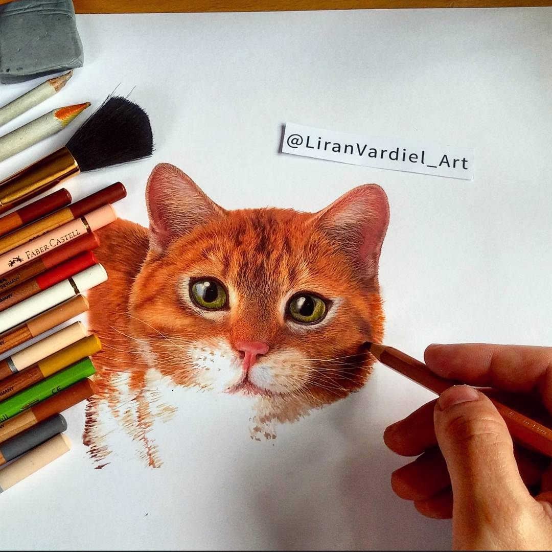 02-Liran-Vardiel-Animal-Drawings-using-Colored-Pencils-www-designstack-co