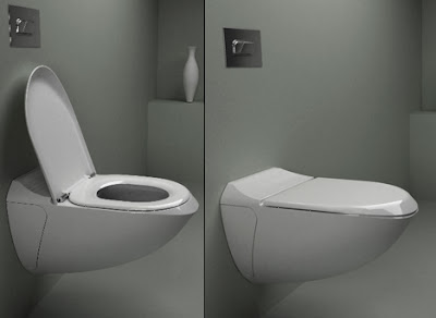 Innovative Toilets and Creative Toilet Designs (11) 11
