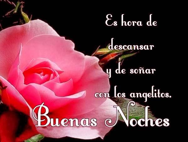 buenas noches rosa
