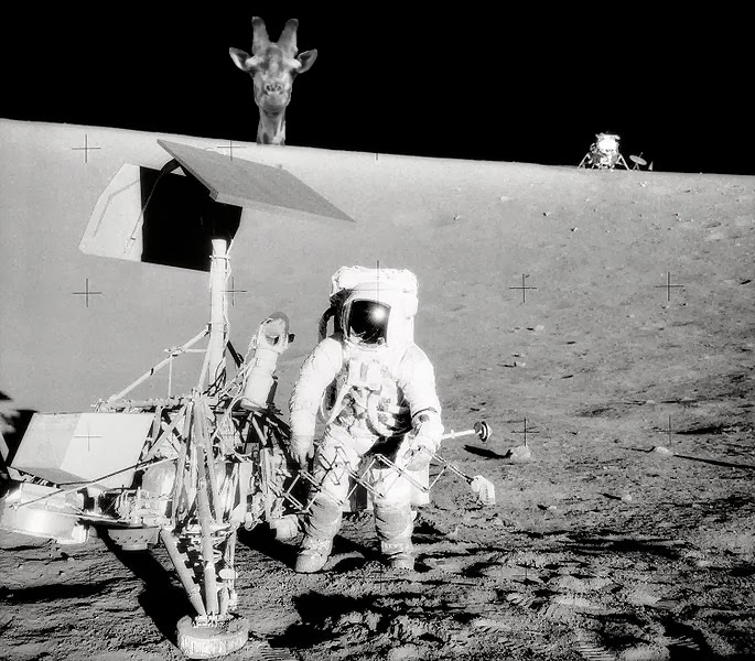 funny moon landing - photo #9