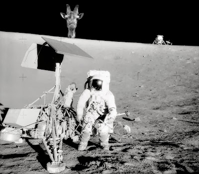 Funny fake lunar landing neil armstrong giraffe picture