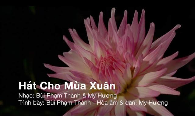 http://www.dslamvien.com/2018/02/hat-cho-mua-xuan.html