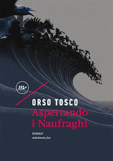 copertina di Aspettando i naufraghi di Orso Tosco