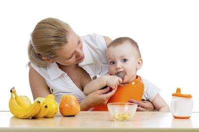 Baby Food Menu 9 Months