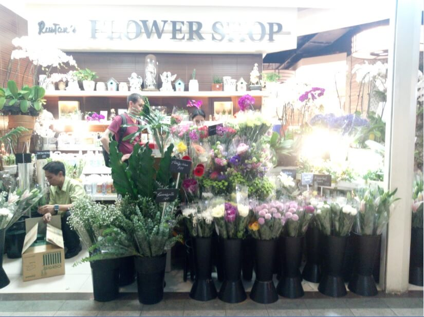 Cherry Mobile Flare S6 Selfie Main Camera Sample - Flower Shop