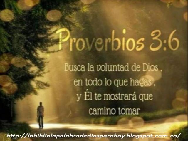 Proverbios Bíblicos de amor