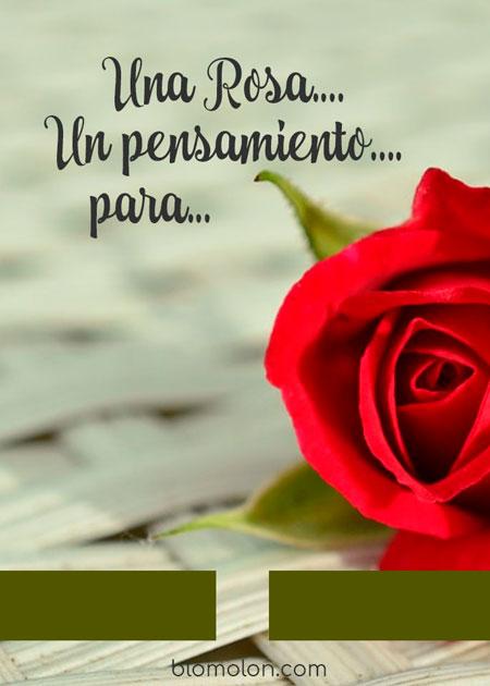 cartel-mensaje-una-rosa-un-pensamiento