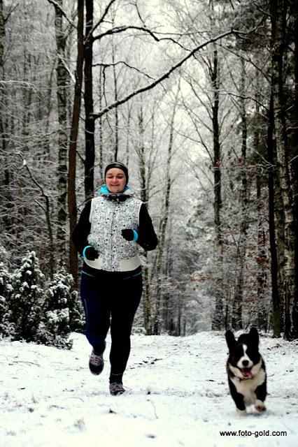 golden retriever, spacer, las, bieganie z psem, z psem w lesie, biegaj z psem, bieganie, jogging
