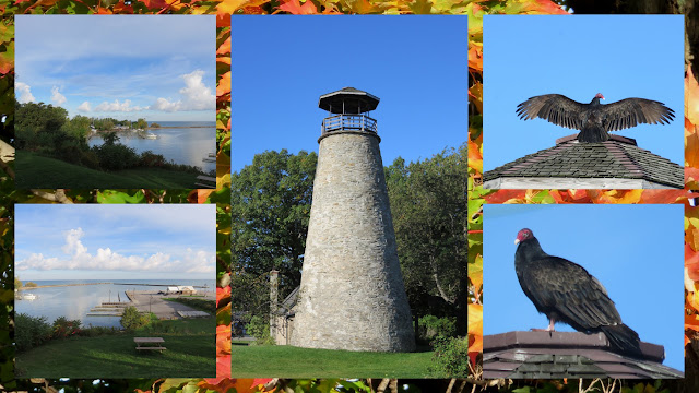Things to do in Westfield, New York: Barcelona Lighthouse and Turkey Vultures