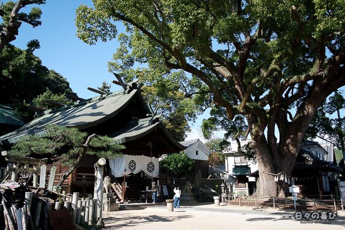 Cour du sanctuaire Ushitora et son grand arbre, Onomichi, Hiroshima