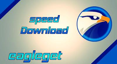 برنامج-EagleGet