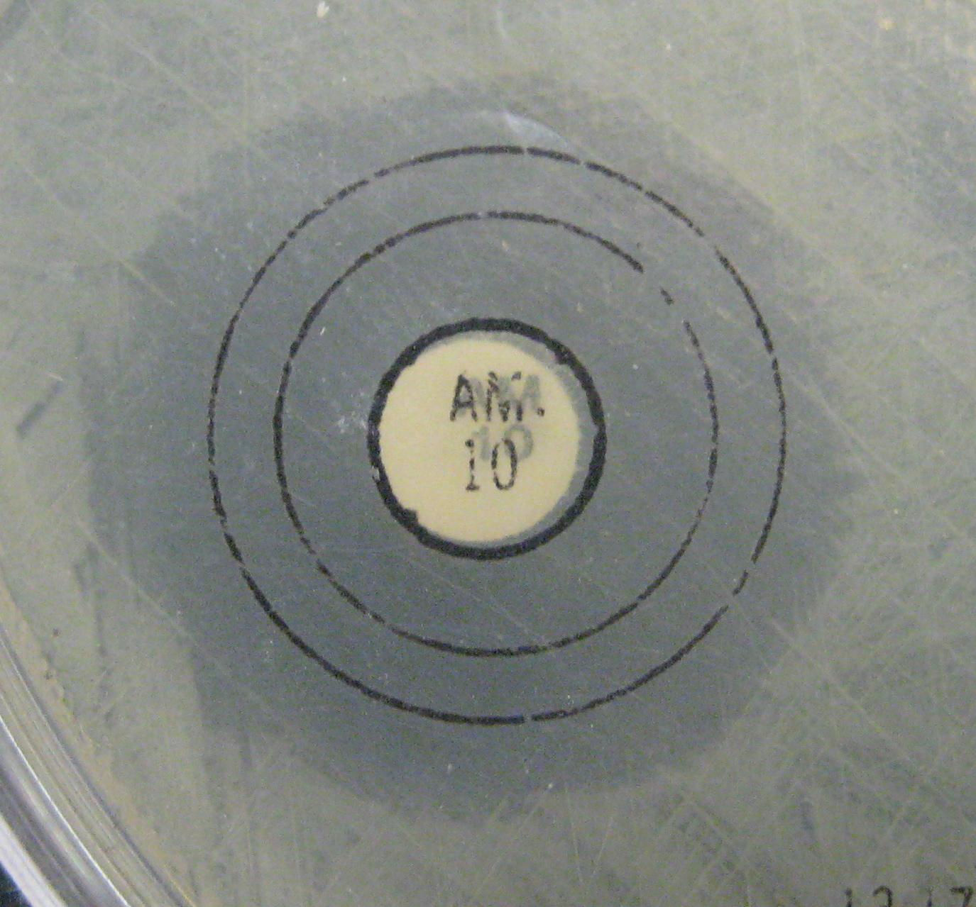 Dvc Microbiology 146 Fall 11 Gard Lab 32 Antibiotic