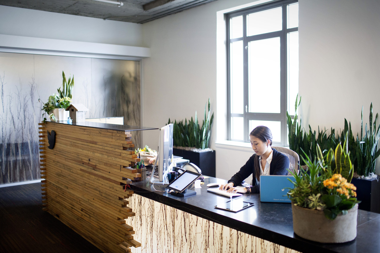 plants for office space. as we all know plants are amazing, but why do need them in an office space? well not only to improve air quality by cleaning the and improving your for space