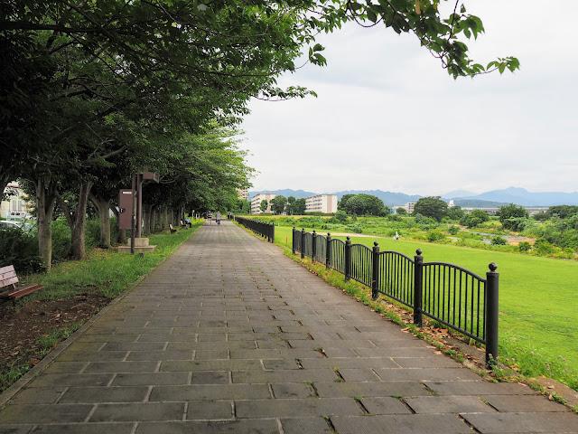 浅川 多賀公園