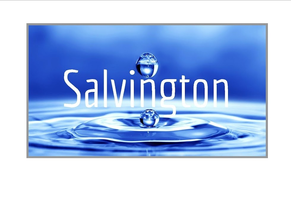 University Of Salvington