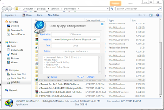 Internet Download Manager 6.25 Build 12 Full