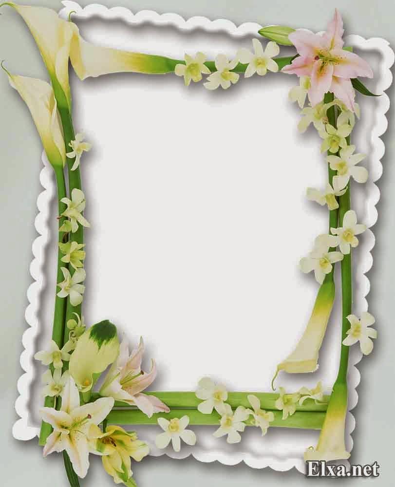 Png frame your blog description flower frame izmirmasajfo