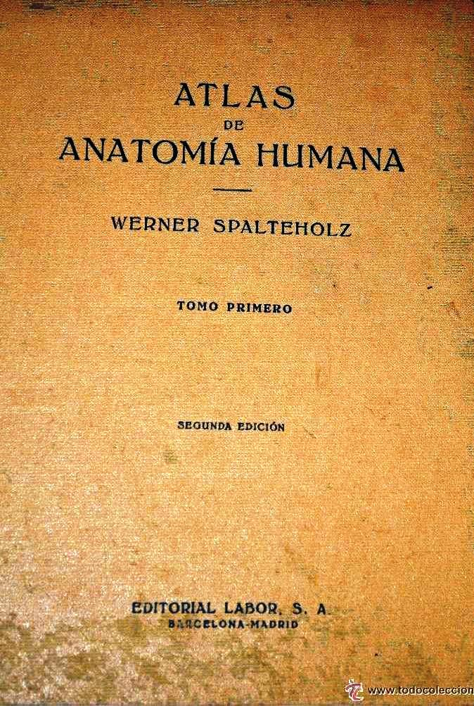 Atlas de anatomía humana, Tomo I - Werner Spalteholz | LibrosVirtual