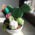Cactus amigurumi // Free pattern