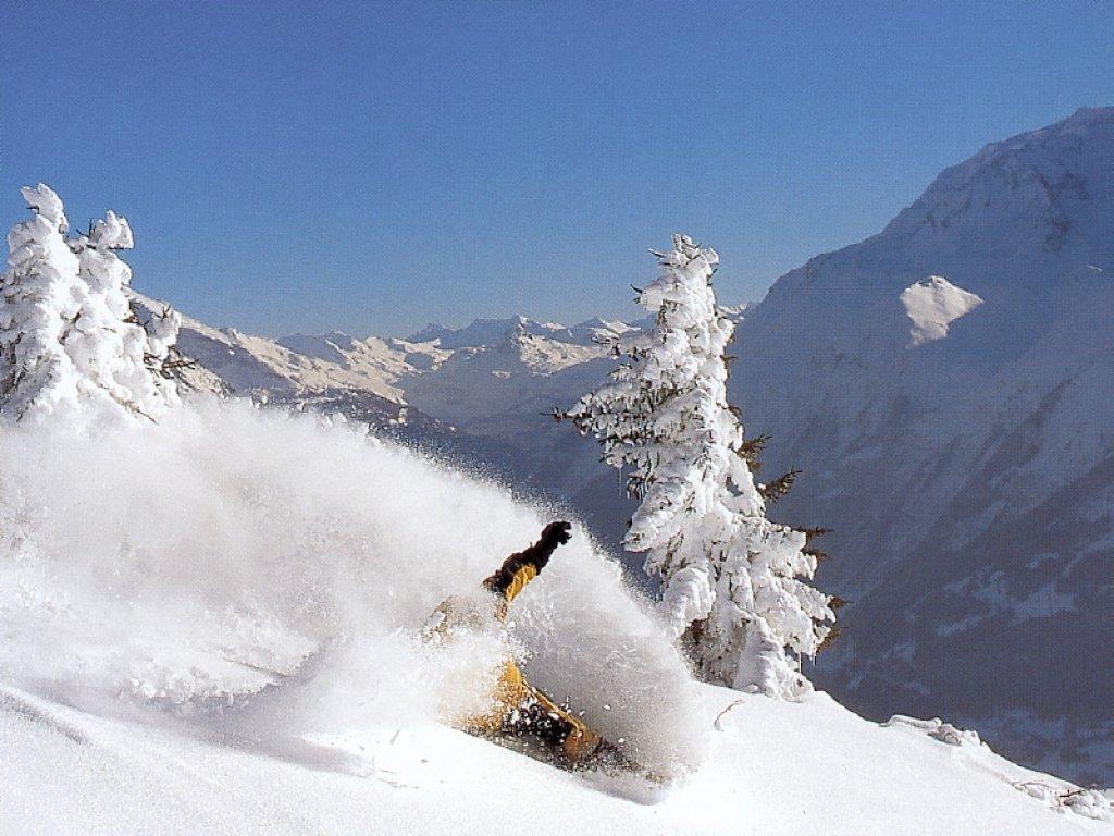 amazing snow wallpaper joseph - photo #24