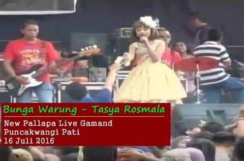 Tasya Rosmala - Bunga Warung - New Pallapa Gamand Pati 2016