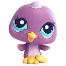 Littlest Pet Shop Petriplets Penguin (#2321) Pet