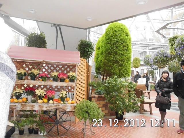 Suasana Taman Bunga di Herb Gardens