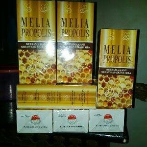 Manfaat melia propolis
