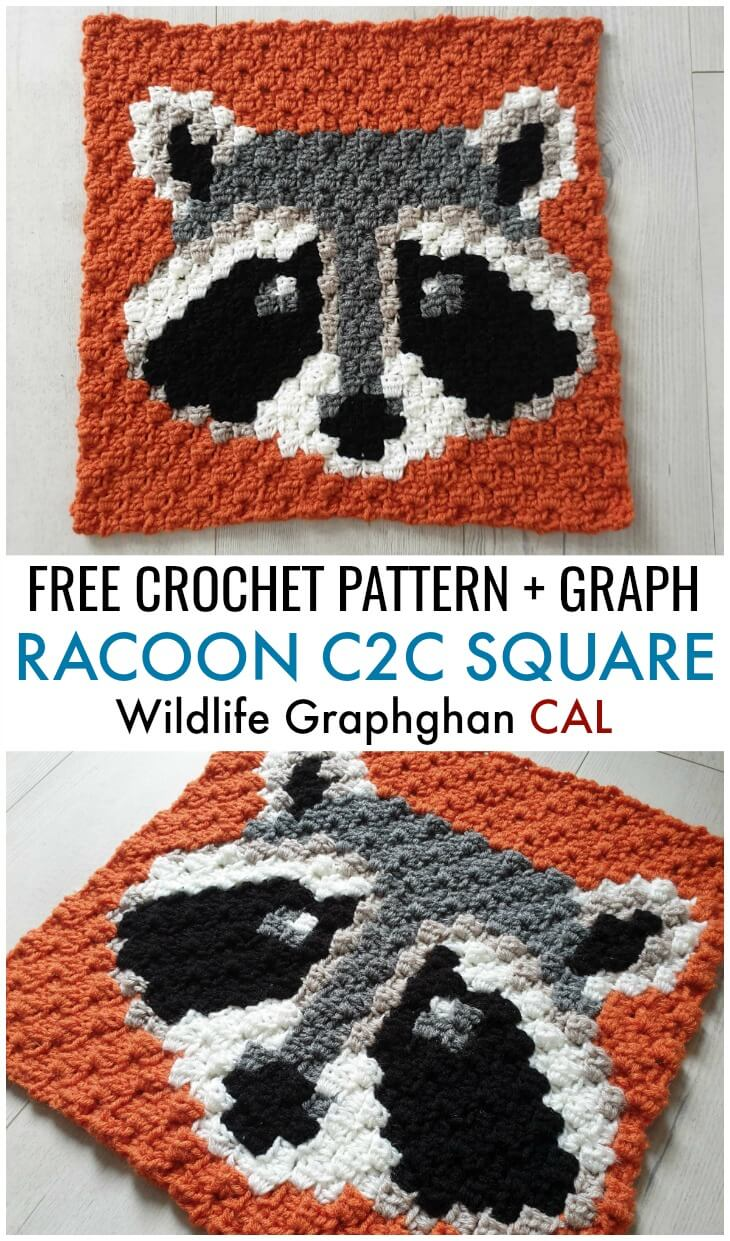 Raccon C2C Square - Free Crochet Pattern