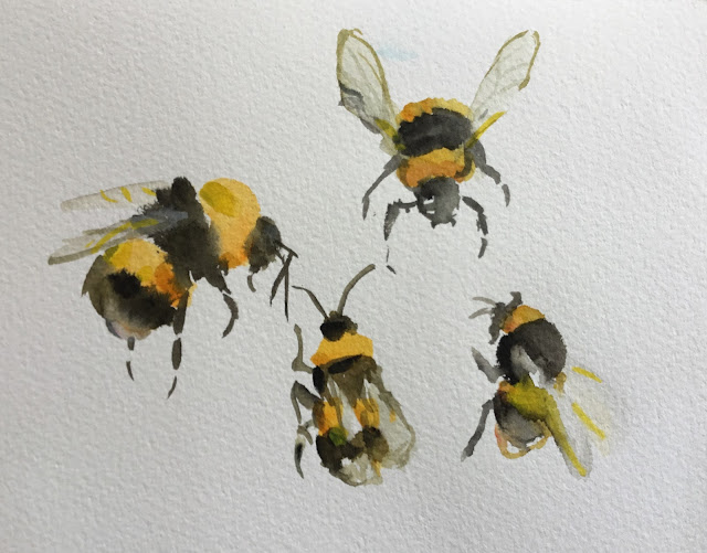 Watercolor bumble bees by Ulf Artmagenta
