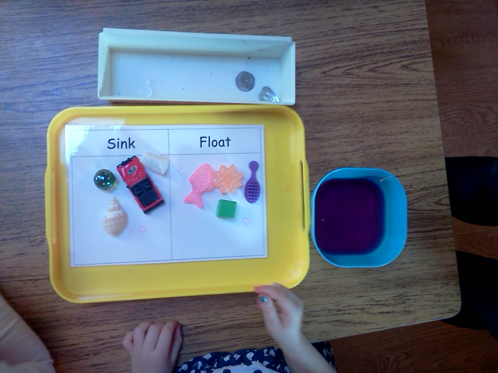 Montessori Design Sink And Float