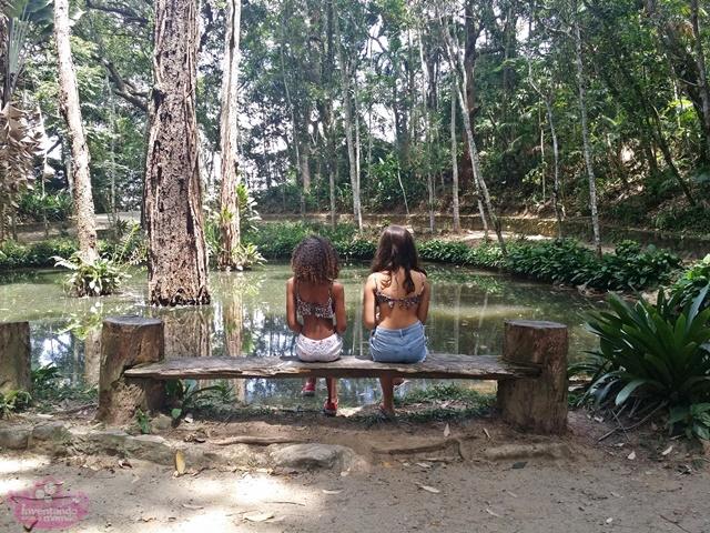 O que fazer na Floresta da Tijuca