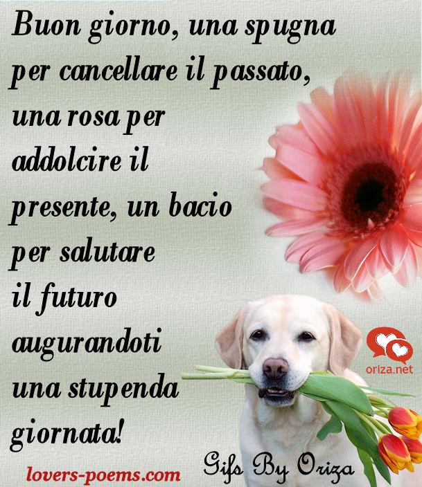 Messaggi, Frasi, Poesie d'amore: Buongiorno!
