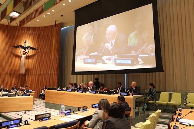 Comité de Descolonización de la ONU defiende soberanía de los pueblos