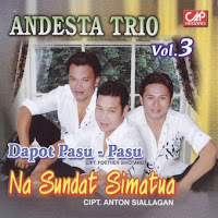 Andesta Trio - Rade Do Au