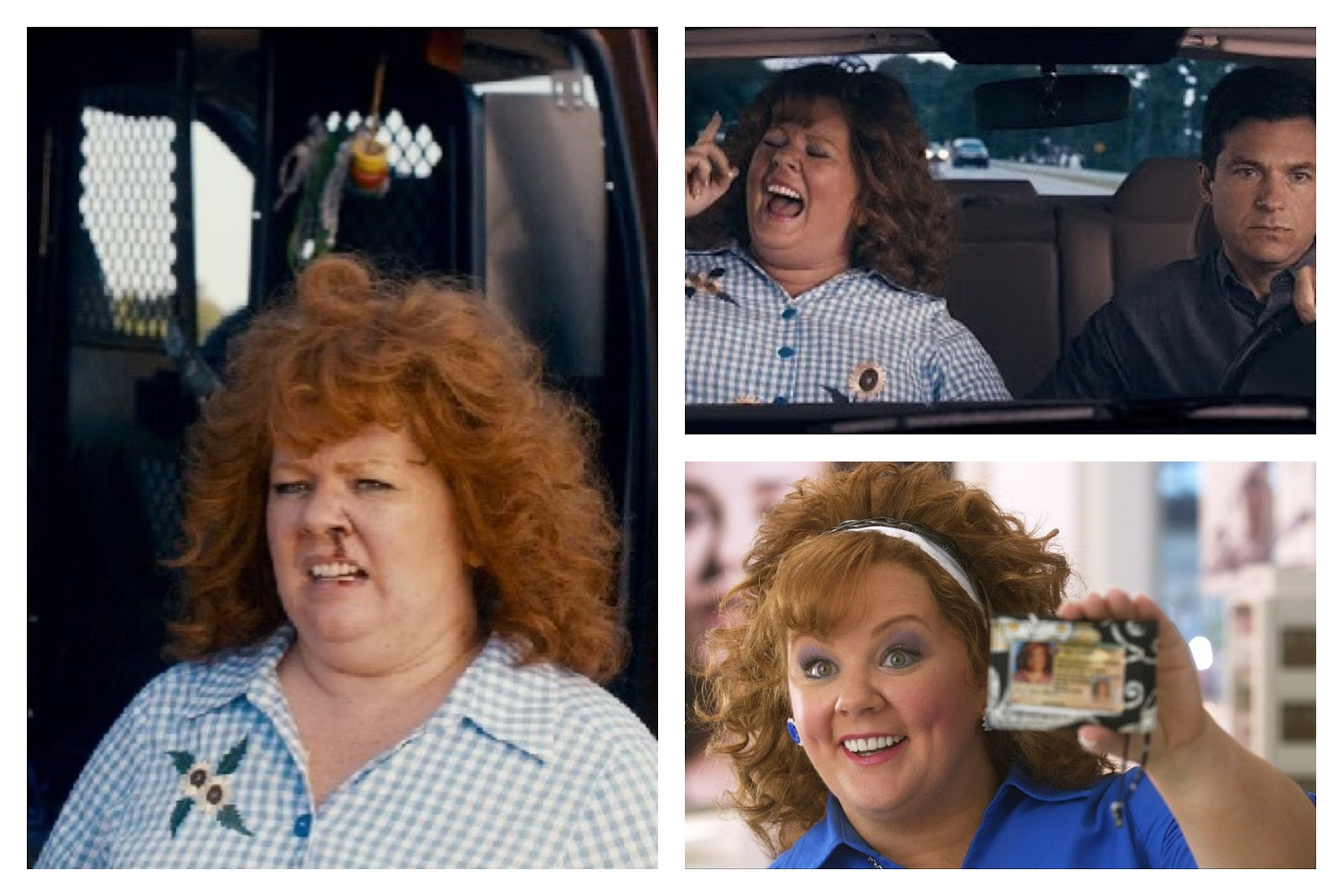 What About Movies Identity Thief 2013
