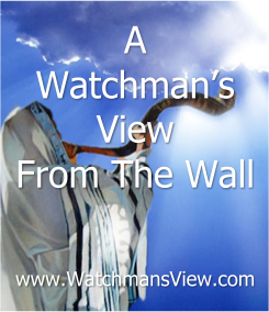 The Watchmen's View From The Wall Website