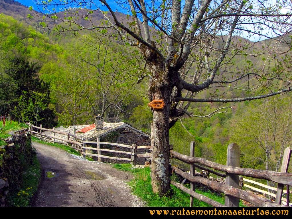 Ruta Peña Redonda: Señal indicando el camino a las Foces del Pino