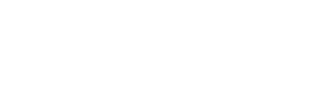 Zordo | Official Home Page