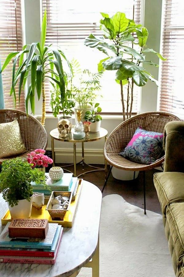 Sala decorada con plantas salas con estilo - Plantas para salon ...