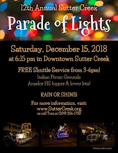 12 Annual Parade of Lights - Sat Dec 15