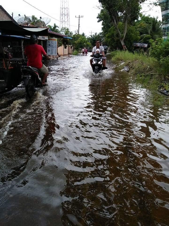 Banjir yang merendam pemukiman warga dan jalan serta perkebunan.