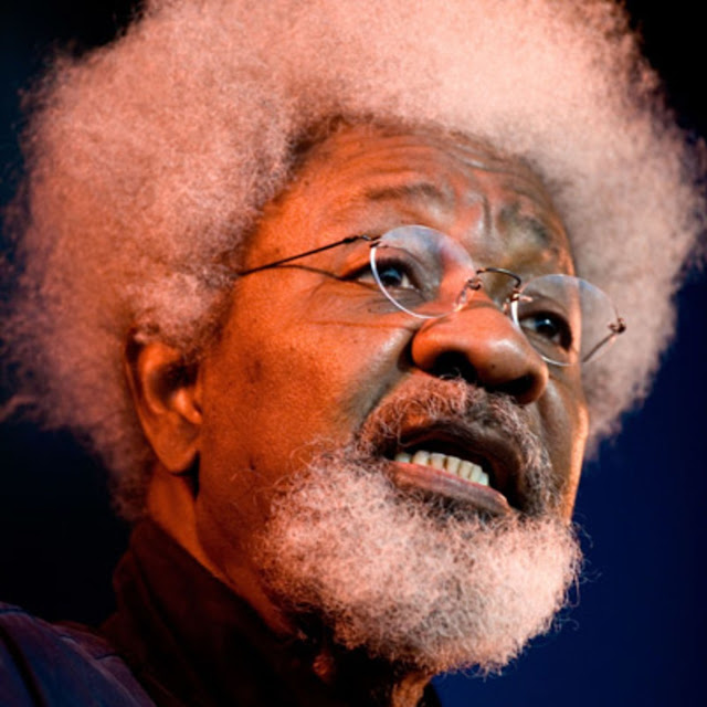 I have destroyed my American 'green card' – Wole Soyinka