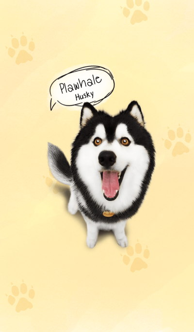 Plawhale Husky dog Theme